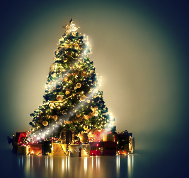 Maccio albero di natale e laboratori creativi all - Le piu belle decorazioni di natale ...