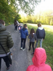 Gruppi di cammino villa guardia